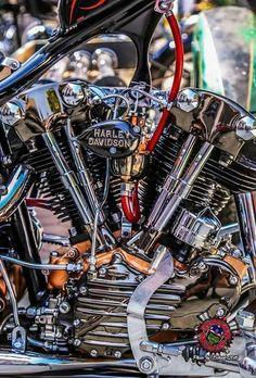 bike &girls- easy life #harleydavidsongirlsstyle #harleydavidsonchoppersart #harleydavidsonbobber