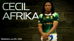 south african rugby cecil | Cecil nominated for top Award - Cecil Afrika - Zimbio