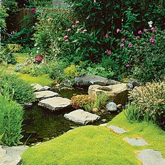 Ground covers soften the hard edges of paths and patios. Here, chartreuse Scotch Moss fringes a pond and steppingstones. Others: blue star creeper, creeping thyme.