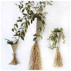 Absolutely gorgeous wall planters! Artistic + Decor + Beautiful! Handmade in USA 🇺🇸 ♥️🌿🌵✌🏻🍃 #plants #urbanjungle #planters #wallplanters #wallhangings #originaldesign #muddyheart