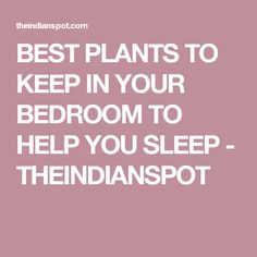 BEST PLANTS TO KEEP IN YOUR BEDROOM TO HELP YOU SLEEP - THEINDIANSPOT