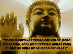 VISIONESDELAMATRIX: Las 30 frases budistas más inspiradoras