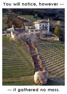 Giant boulders plough through Italian farm - in pictures A landslide in northern Italy caused several boulders to roll down a hillside in Ronchi di Termeno, destroying a barn, barely missing a farmhouse and leaving a trail of destruction through vineyards Surreal Photos, Looking Out The Window, Morning Humor, Northern Italy, Feeling Down, Backyard Projects, Destruction, Bouldering, Amazing Nature