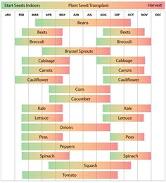 Zone 8 North Carolina Garden Schedule