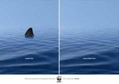 An elegant point about wildlife conservation by DDB&CO. | www.eklectica.in