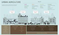 Five Borough Urban Agriculture, what's happening now, and what's in store for a future, greener NYC