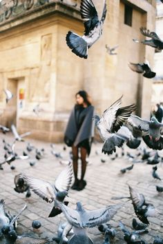 Cool focus! I think it would look even cooler, though, if the girl was in focus and the birds were blurred...I think it would frame the picture nicely (: