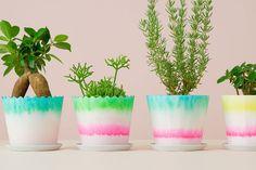 植物を育てる・楽しむためにはベースとなる鉢植えが必要になりますが、鉢自体が印象的にデザインされているものはあまり多くはありません。そんな中今回紹介するのは、鉢を美しく彩る紙ポット「CMY」です。