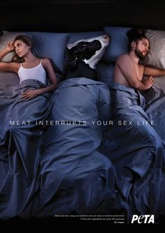 Image via peta The consumption of meat inhibits your sex drive, according to new billboard ads from PETA. The animal rights organization. Viral Marketing, Guerilla Marketing, Marketing Ideas, Ads Creative, Creative Advertising, Creative Photos, Peta Ads, Effects Photoshop, Brand Promotion