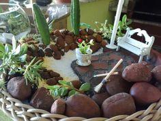 Mini jardim - Relax !