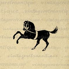 Printable Graphic Black Horse Image Download Digital Illustration Vintage Clip Art. Printable high quality digital graphic image for making prints, iron on transfers, tea towels, papercrafts, and many other uses. Real antique artwork. Antique artwork. This image is high quality at 8½ x 11 inches large. Transparent background version included with every graphic.
