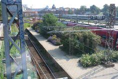 HAVEHJERNEN: juli 2013 Østerport station, Copenhagen