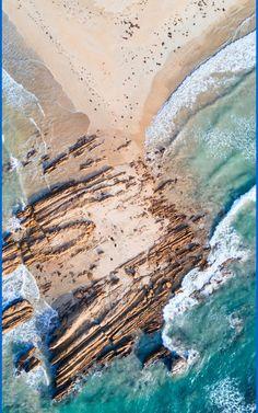10 Best Tasmania Beaches. This is the perfect place to go beachcombing and swimming, especially when the aquamarine sea at this Tasmania beach is calm. #tasmania #Australia #beaches #travel #summer #nature #water #freycinet Nature Water, Tasmania, Beautiful Beaches, Perfect Place, Places To Go, Ios, Scenery, Wildlife, Calm