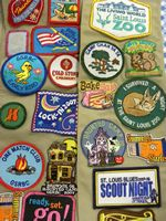 GS of S IL - Patch Program Girl Scouts Usa, Girl Scout Troop, Cub Scouts, Girl Scout Patches, Girl Scout Badges, Girl Scout Activities, Girl Scout Camping, Illinois State, Troops