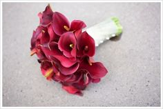A bunch of burgundy calla lilies. Simple but does the job quite well.