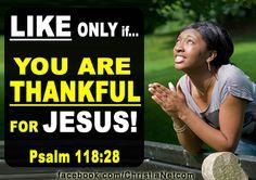 PRESS LIKE IF YOU ARE THANKFUL FOR JESUS! WRITE AMEN! http://www.facebook.com/ChristiaNetcom