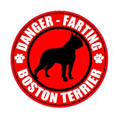 Danger - farting Boston Terrier. Yall need this! @Merritt Burton
