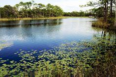 Lakeside in Watercolor, FL    Photograph ©KyleBarnes