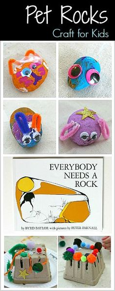 Pet Rocks (and Pet R