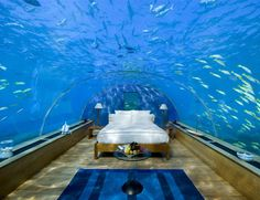 Underwater Bedroom Suite in Maldives have always had a fascination with underwater rooms, and the latest one we stumbled across blew our minds. This stunning underwater bedroom suite is located at the Conrad Maldives Rangali Island in the Indian Ocean. Hotel Subaquático, Hotel Suites, Bad Hotel, Hotel Amenities, Hotel Stay, Hotel Deals, Dream Vacations, Vacation Spots, Vacation Ideas