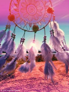 Dream Catcher bohemian Fine art photography by Agirlnamedglitter
