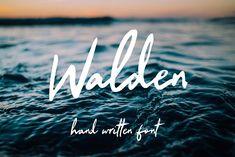 Walden // #Script #brush #handwritten #handmade #handcrafted #wedding #birthdaycard #travel #travelblog #font #typeface