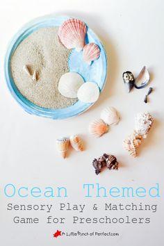 Ocean Sensory Play & Sea Shell Matching Game