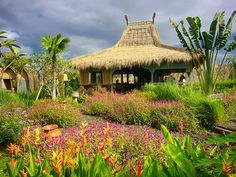 Desa Seni Village Resort, Bali.