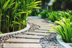 Feng Shui Garden Design Ideas That Will Create Positive Energy Jardin Feng Shui, Feng Shui Garden Design, Ideas Para Decorar Jardines, Side Yard Landscaping, Landscaping Ideas, Stone Landscaping, Stepping Stone Paths, Stone Walkway, Tropical Garden