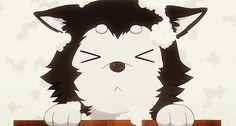 nigou - so cute! >.<