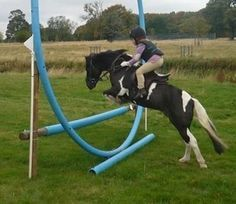 homemade horse jump