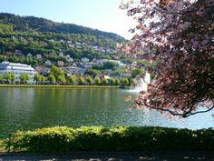 Festplassen i Bergen, Hordaland