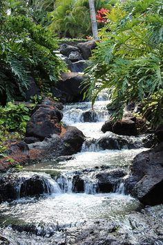 Flowing Photograph, Hawaii, The Fairmont Orchid, Raquel Amaral Photography, waterfall, rocks, plants