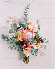Flower Crush Friday: Pretty Protea