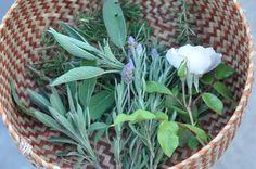 Freeandnative Herbal Bath Beauty Recipe, Diy Beauty, Health And Wellness, Herbalism, Stuff To Do, Herbs, Day, Lust, Plants