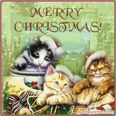 christmas cat clipart | Merry Christmas Christmas Cats picture