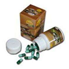 Obat Herbal Kanker berbahan Jamur Dewa. Obat Herbal Kanker berkhasiat untuk menyembuhkan penyakit kanker