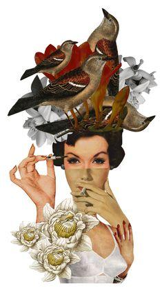 Fashion collage and gif Hatebirds