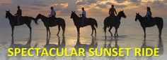Head south to South Padre for a romantic sunset ride. http://www.horsesonthebeach.com