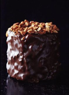 Les recettes au chocolat de Christophe Felder Fancy Desserts, Köstliche Desserts, Chocolate Desserts, Delicious Desserts, Dessert Recipes, Christophe Felder, Cookies, Let Them Eat Cake, Love Food