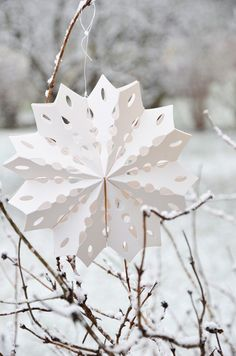 these folded stars would be great hanging in each window of the house for the month of January . . .