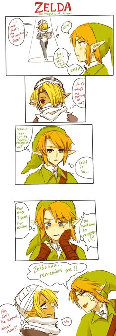Zelda: The Tragedy of Time