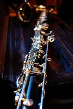 Portrait of a Bass Clarinet