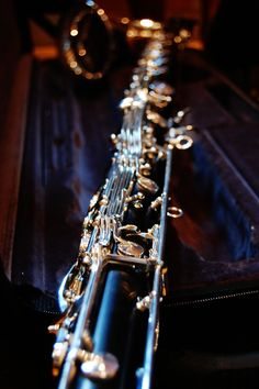 Portrait of a Bass Clarinet