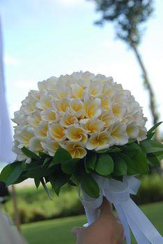 Frangipani Bouquet f