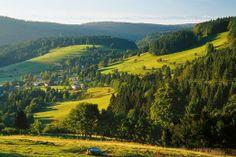 Het #Zwarte #Woud in #Duitsland heeft altijd al iets mysterieus uitgestraald. Ontdek alle geheimen van deze bosrijke Duitse #streek en verken dus ook de kleine paadjes... #Bos #groen #landschap #uitzicht #heuvels #bergen #reizen #travel #travelbird #Europa