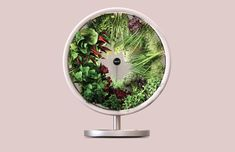 Rotofarm-indoor-gardening - Design Milk Indoor Hydroponic Gardening, Cannabis, Milk Shop, Garden Landscape Design, Landscaping Design, Garden Landscaping, Hydroponics System, Plant Growth, Seed Pods