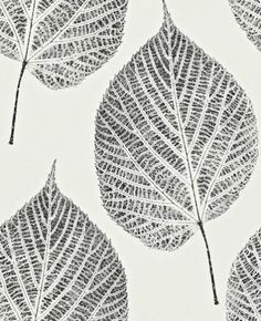 Leaf (110373) - Harlequin Wallpapers - A beautiful large scale leaf motif with intricate detailing in the leaf. Shown here in contrasting black on white. More colours are available. Please request a sample for true colour match. Paste-the-wall product.