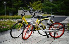 Shanghai Bicycle Association Established Shared-Bike Division