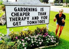 Gardening is cheaper than therapy and you get tomatoes...